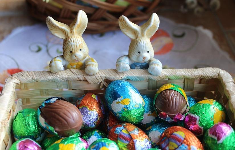 bunnies-3185267_960_720.jpg