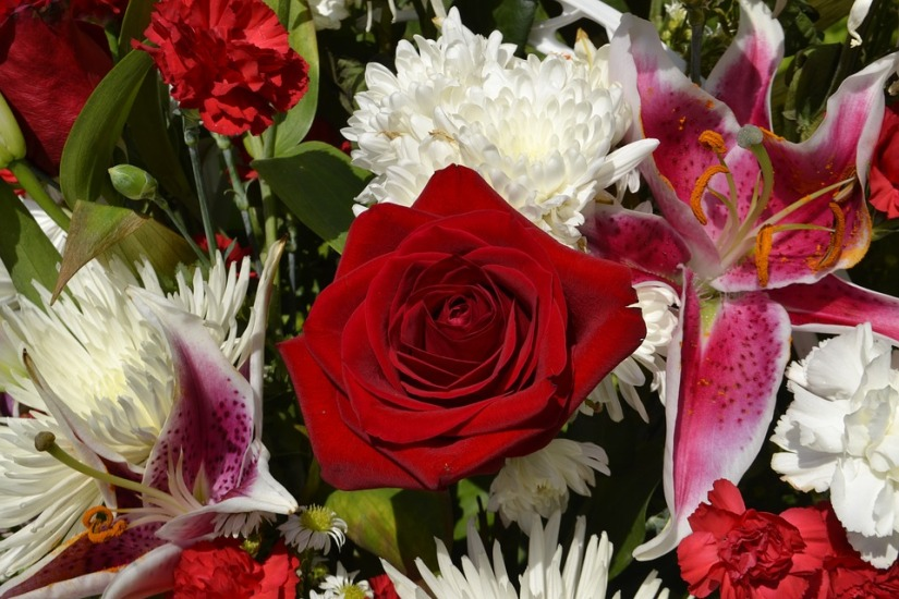 flower-3287773_960_720.jpg